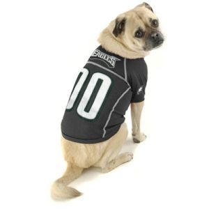 Eagles dog, I'm thankful for you!